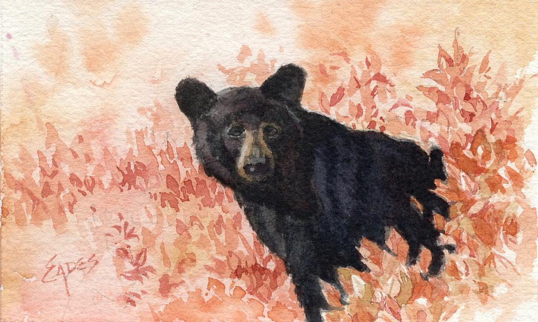 Papa Bear by Linda Eades Blackburn