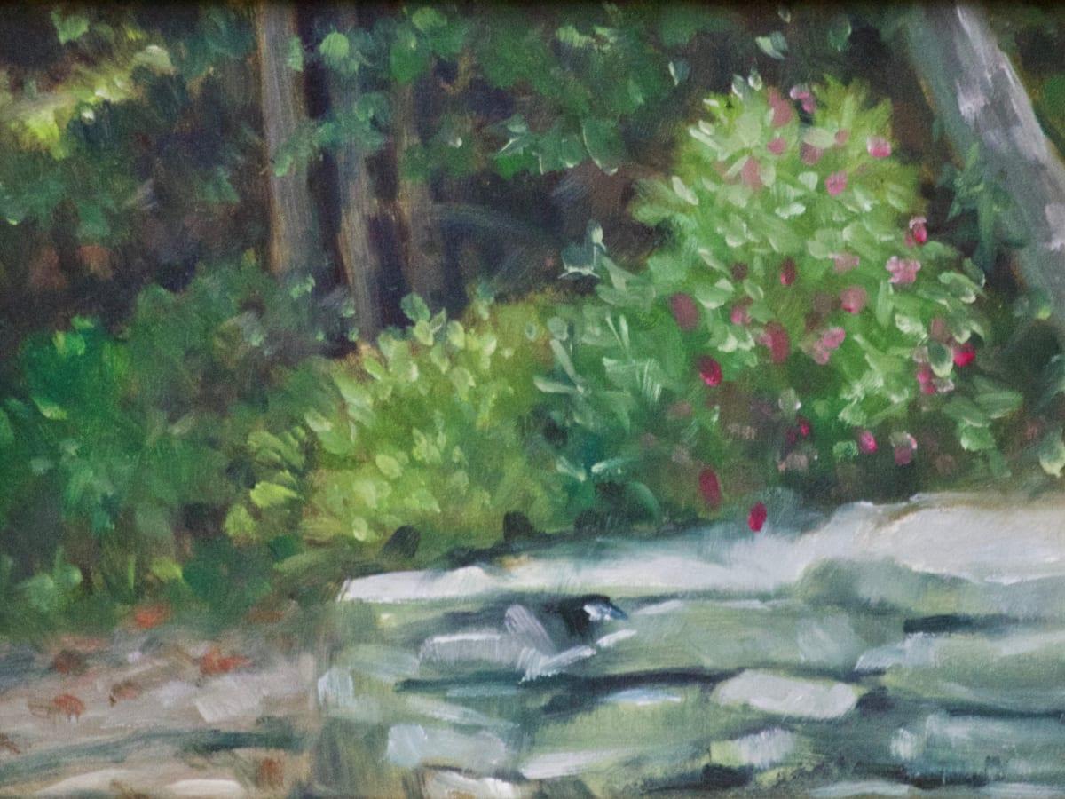 Rock Wall and Hibiscus by Linda Eades Blackburn