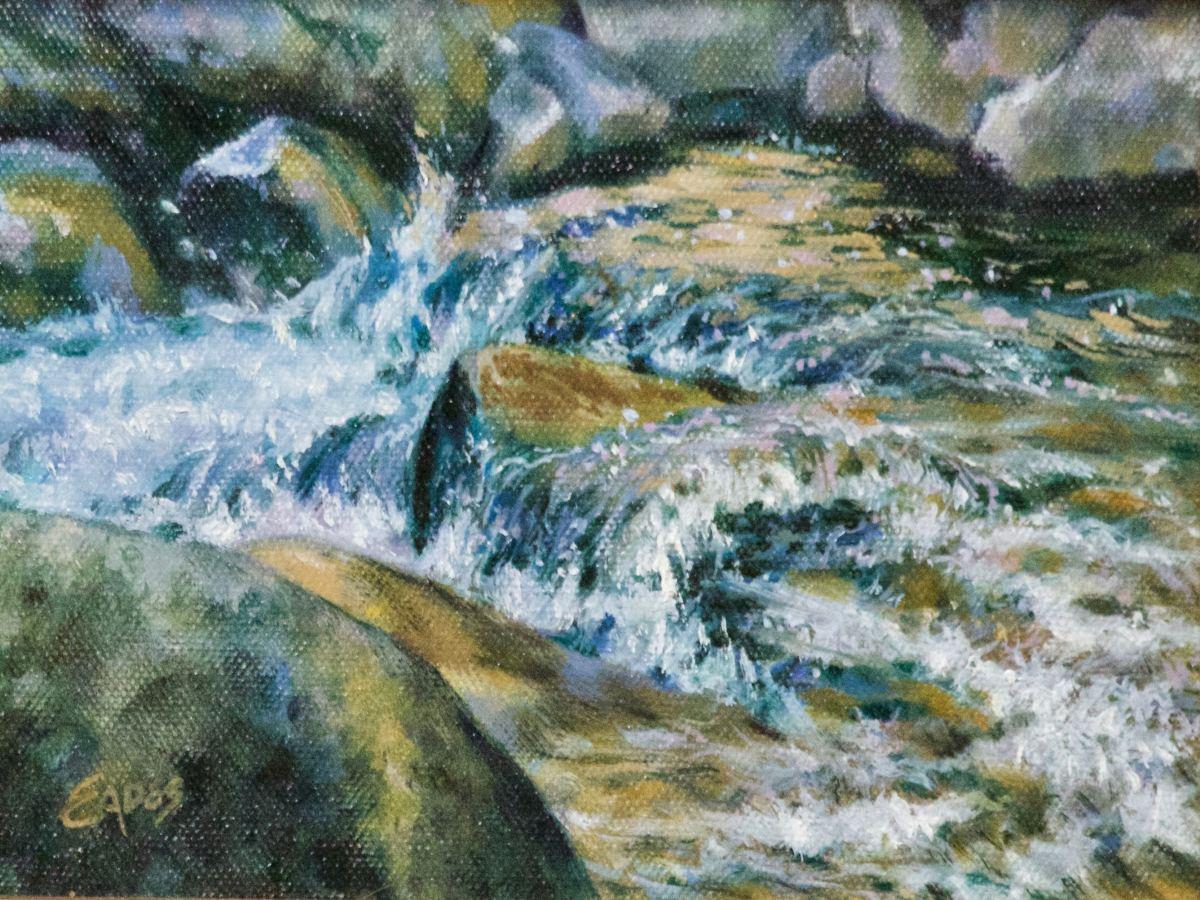 Running Water by Linda Eades Blackburn