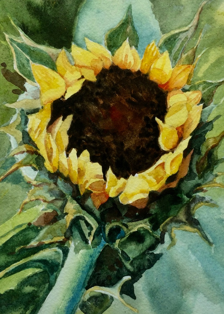 Sunflower Season by Linda Eades Blackburn