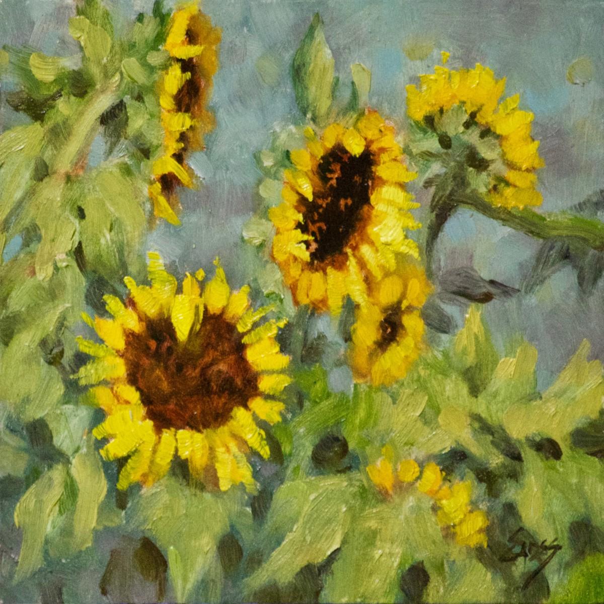 Sunflower Sighting by Linda Eades Blackburn