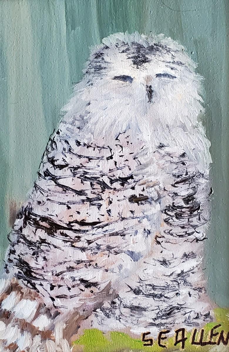 Snowy by Sharon Allen