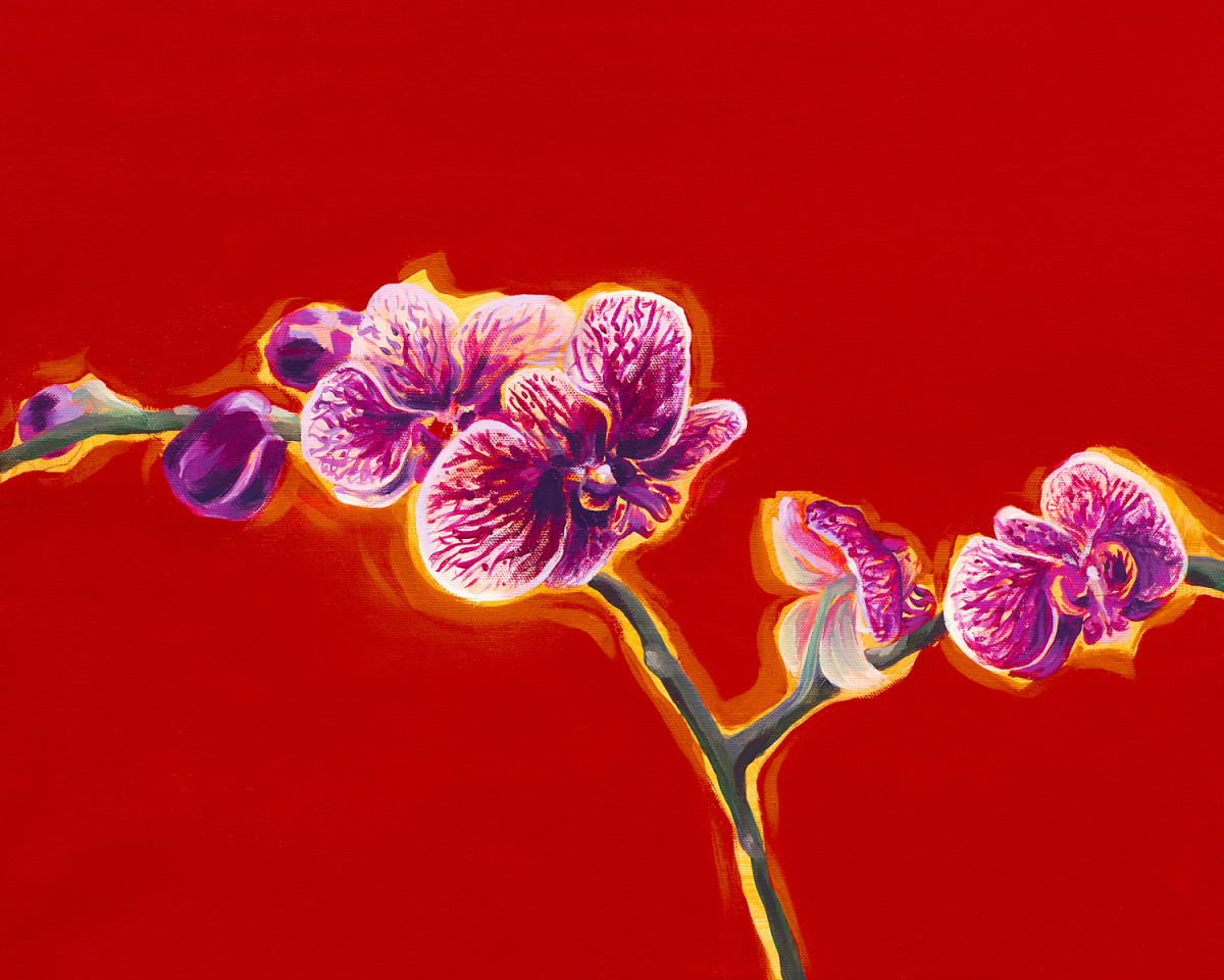 Orchid Blessings (Limited Edition) by Joanne Probyn