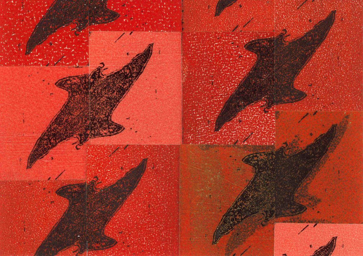 Raptor by Jacky Lowry