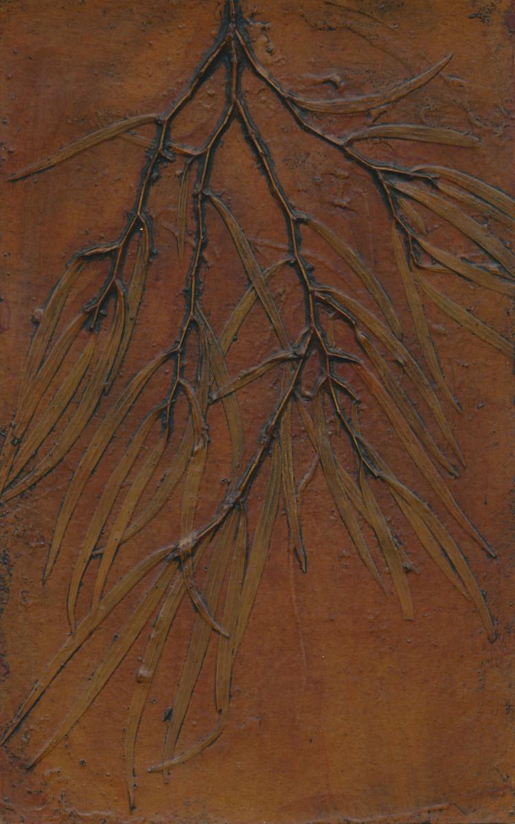 Western Australian Peppermint Tree 2, Collagraph Printing Plate, © Jacky Lowry 2016 by Jacky Lowry