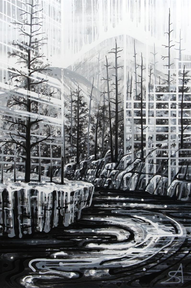 Ash Forest (Toronto + Kootenay National Park) by Amy Shackleton