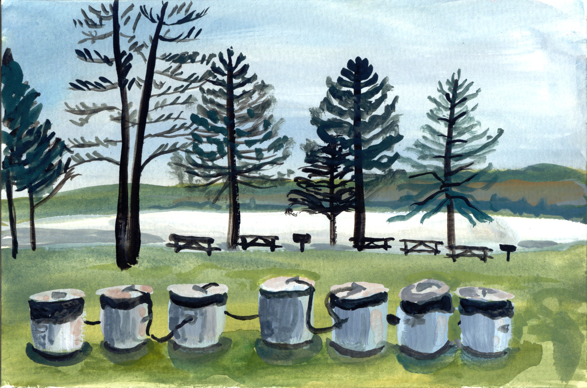 December 31, 2007  Lake Noximickon by Alan Powell