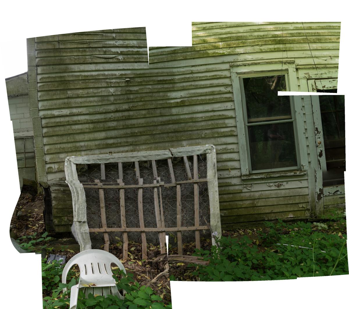 Backyard Mold Trash by Alan Powell
