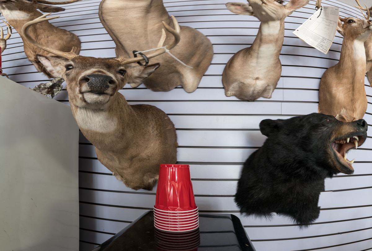 Buck, Bear & Red Cups by Alan Powell