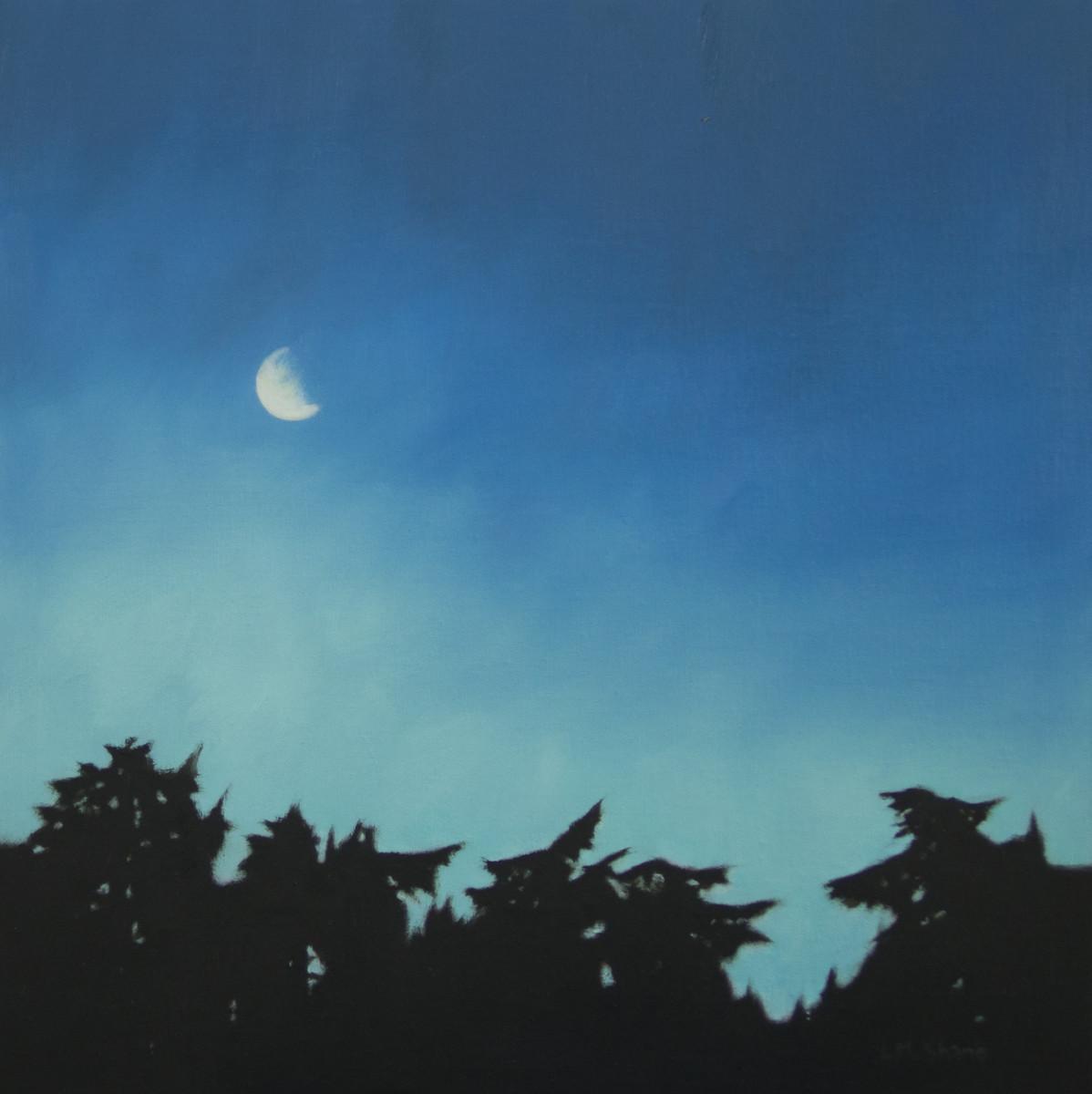 May Moon by Lisa McShane