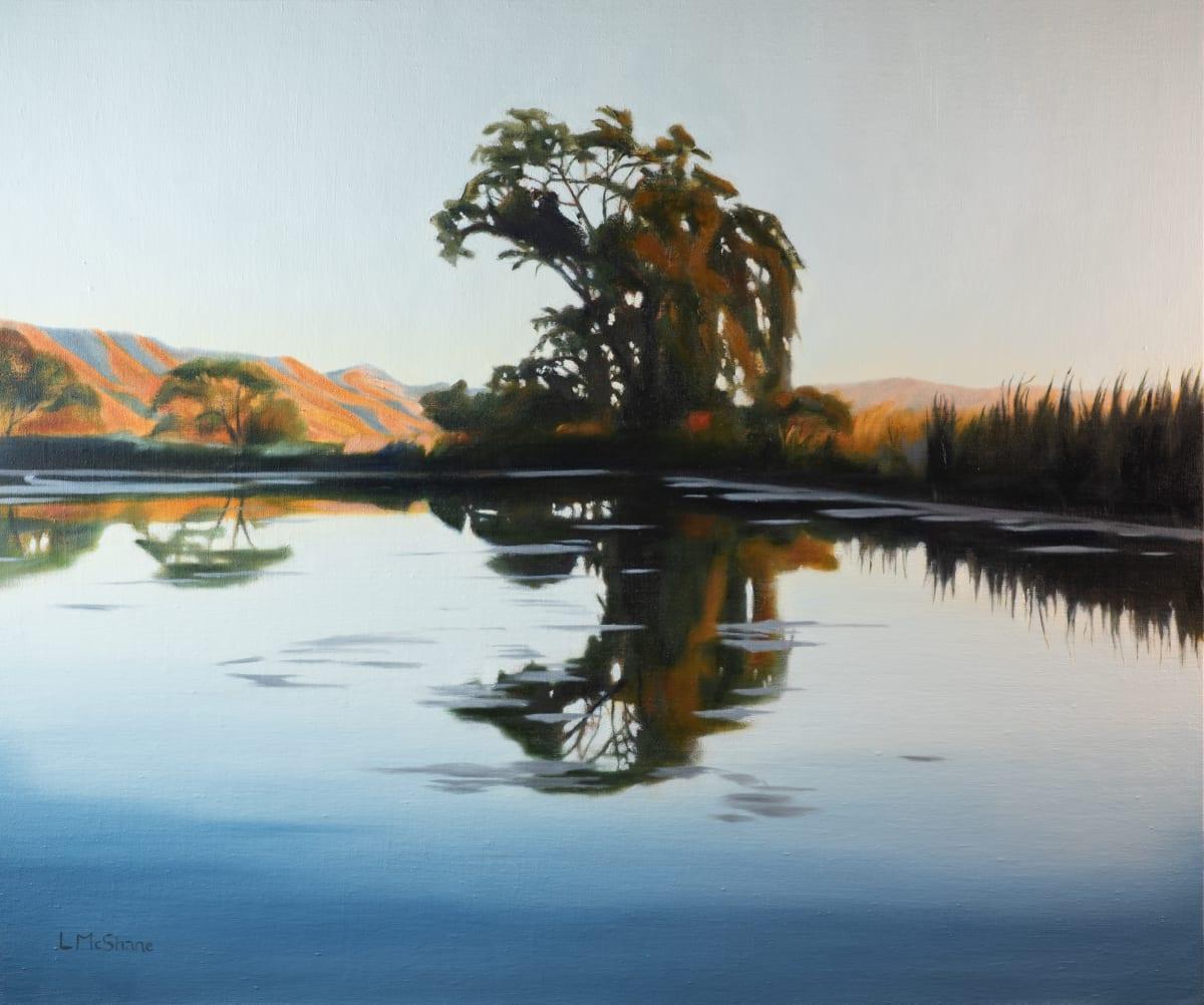 Klamath: Pond Reflection by Lisa McShane