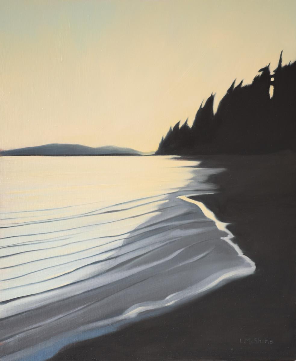 Padilla Shore and the Yellow Sky by Lisa McShane