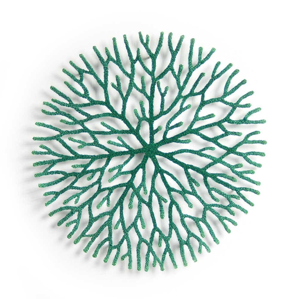 nature study (Radiating growth) by Meredith Woolnough
