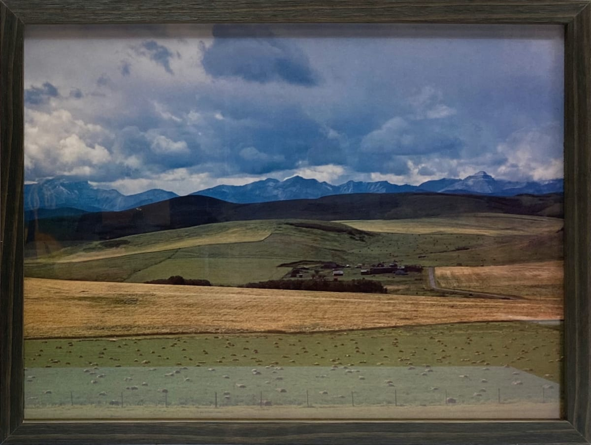 2891 - Pasture Hills