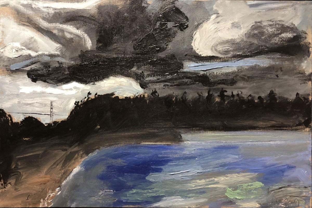 0610 - Stanley Park Storm by Matt Petley-Jones