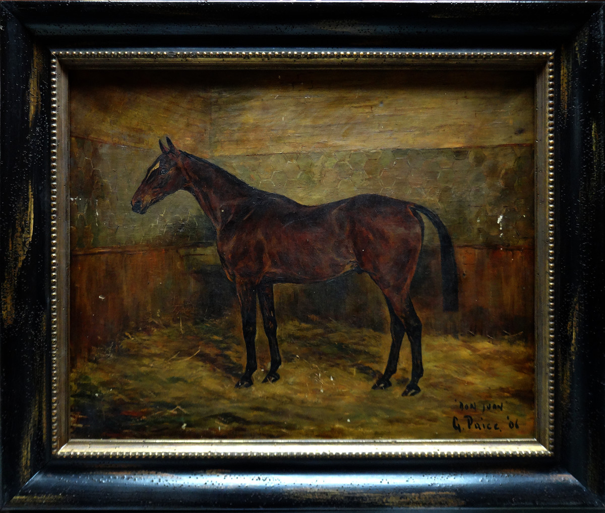 0030 - Portrait of a Horse 'Don Juan' by G Paice