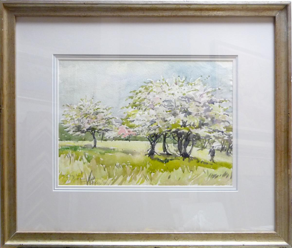 2358 - Study of May Trees, Richmond Park by Llewellyn Petley-Jones (1908-1986)