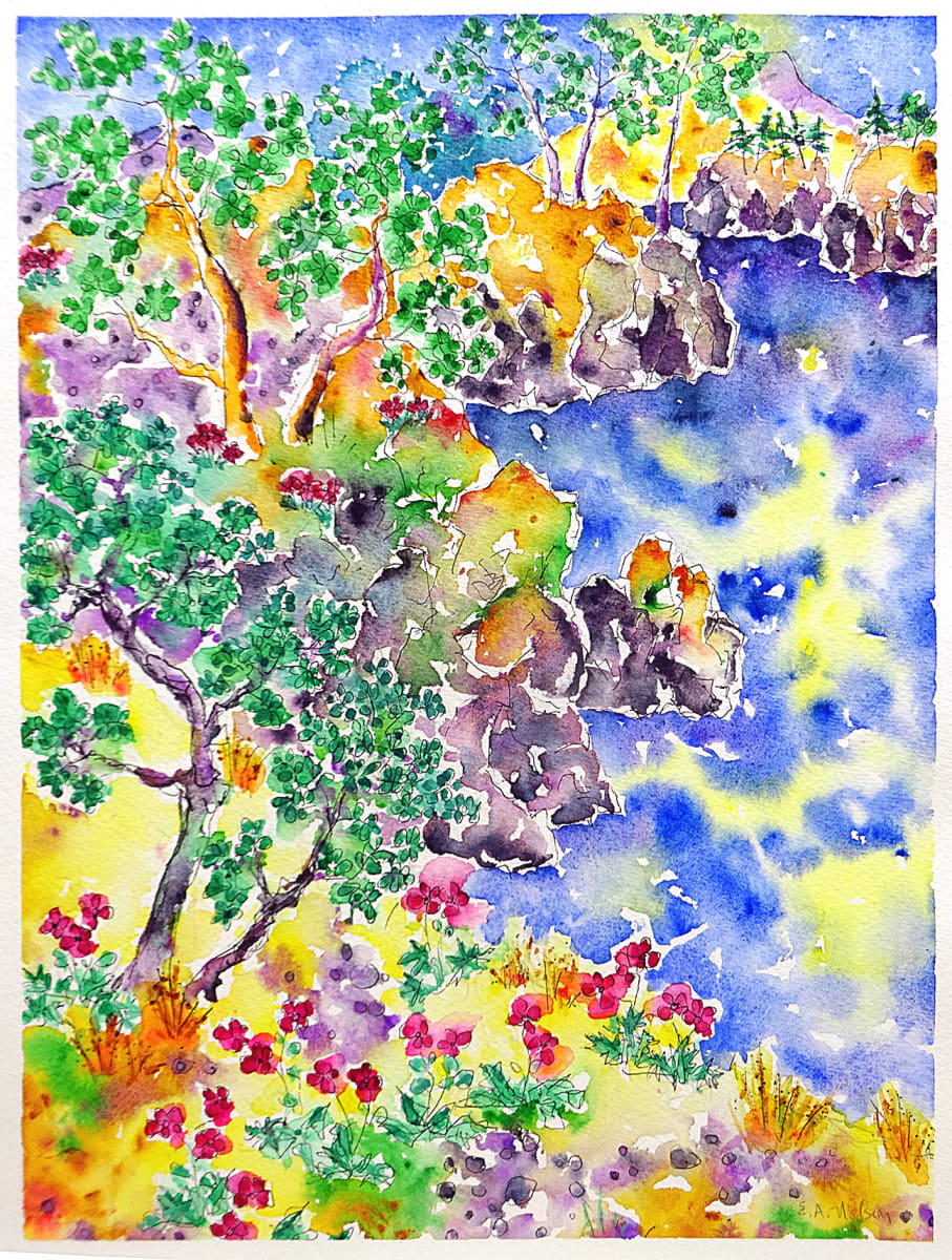 3046 - Summer Bluffs, Pender Island by Ann Nelson