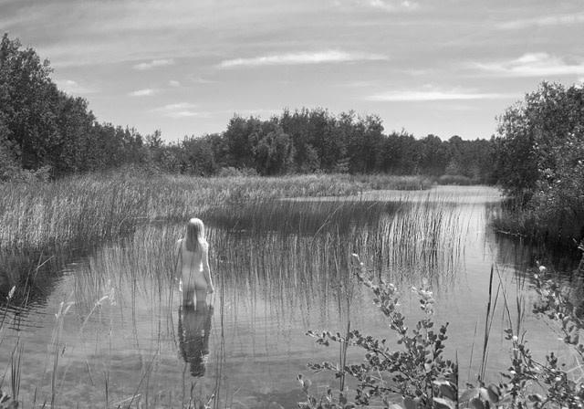 2913 - The Pond Absorbs Silently by Linda Vermeulen