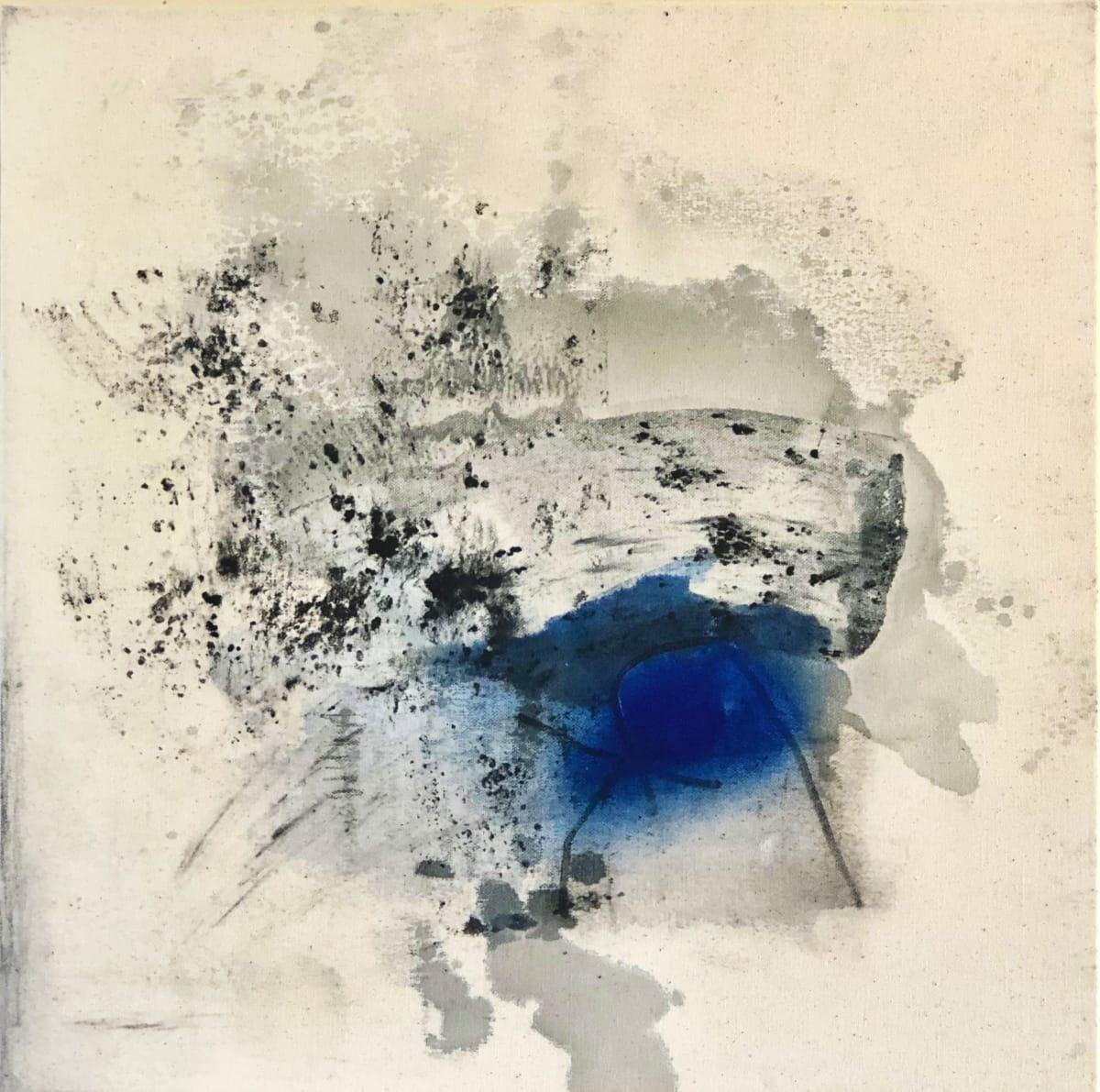 Mostly Unseen by Laura Viola Preciado