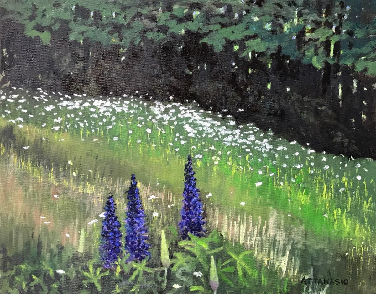 Lupines by John Attanasio
