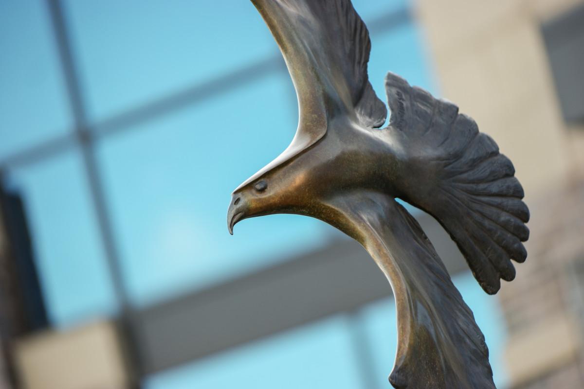 Wings of Freedom by Dimitry Domani Spiridon