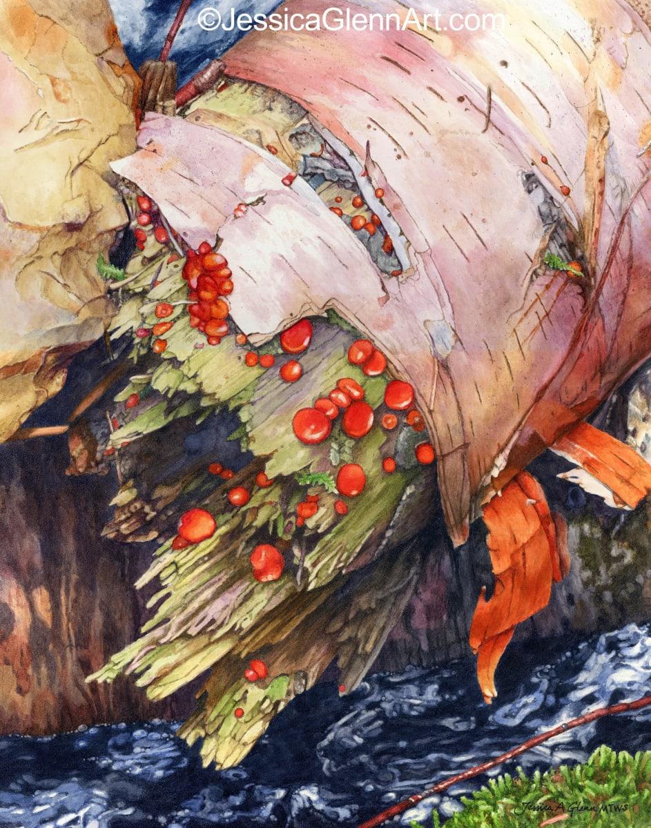 Birch Jewels by Jessica Glenn