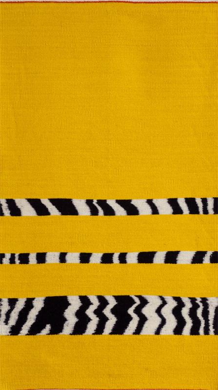The Zebra in My Head by Sherri Woodard Coffey