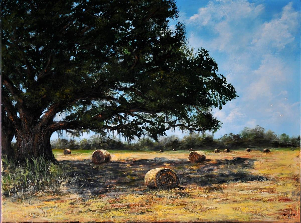 "Golden Field of Harvest by Larry ""Kip"" Hayes"