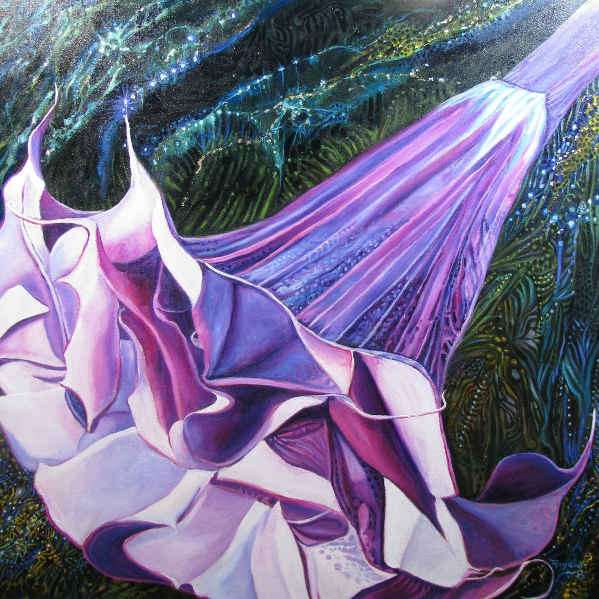 Purple Angel's Trumpet by Tony Mayard