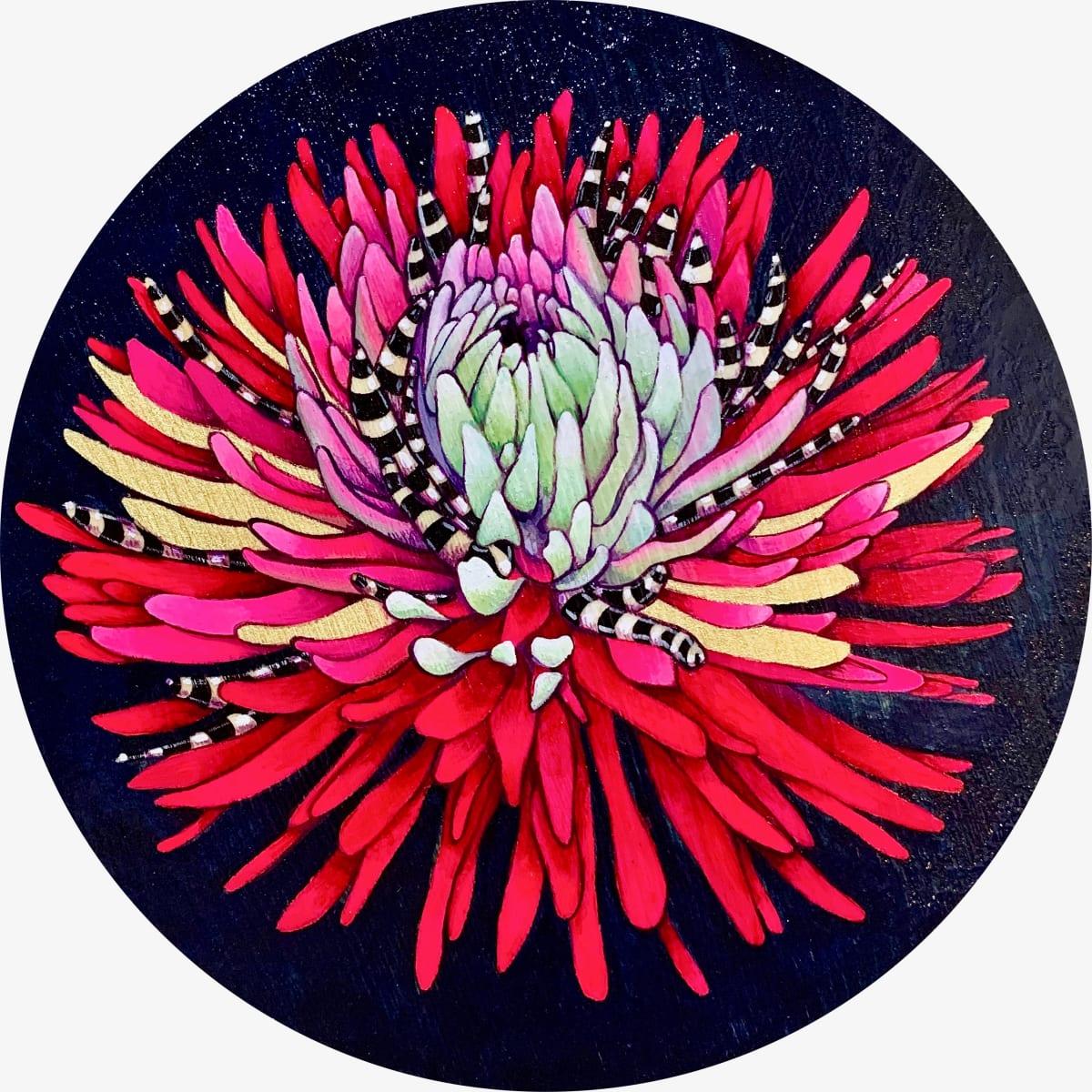 Chrysanthemum by Kristie Mayeaux