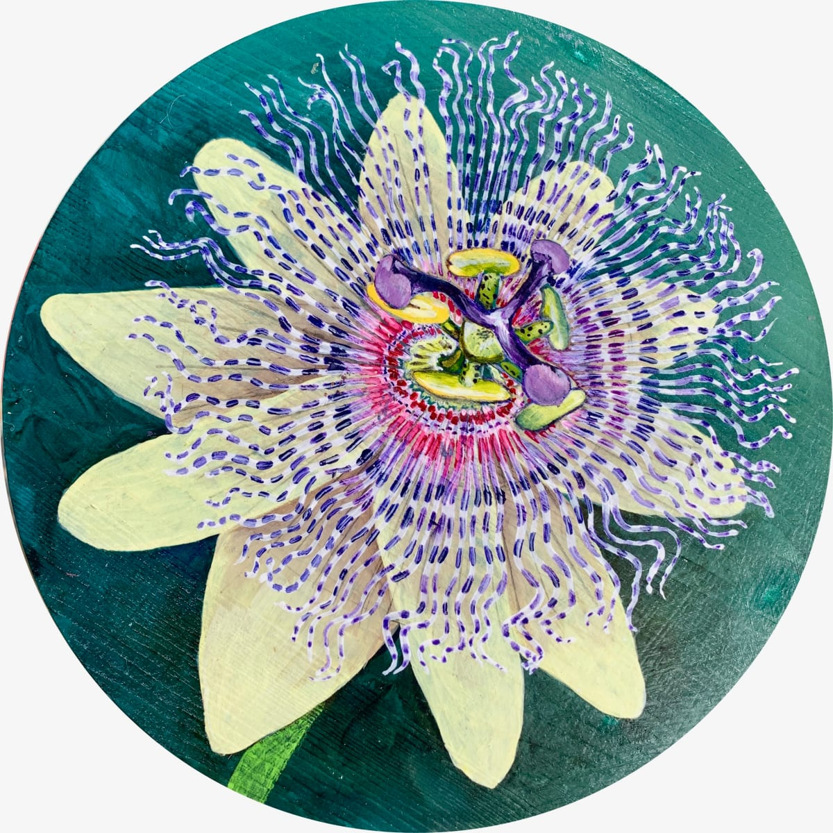 Passion Flower by Kristie Mayeaux