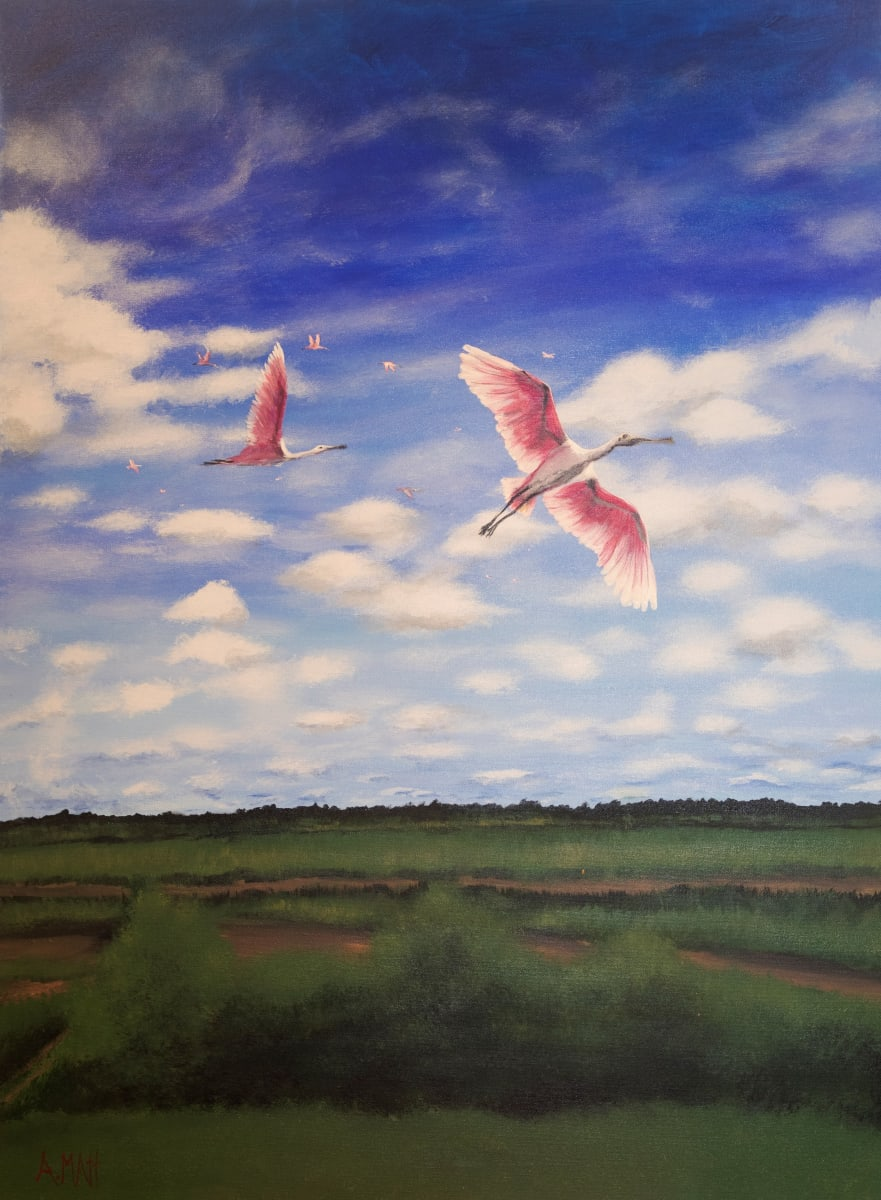 Roseatte Spoonbills by Anne Matt