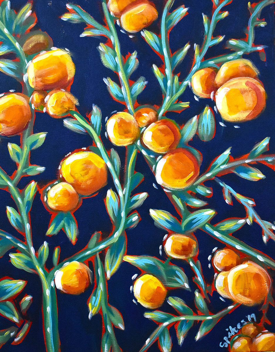 Satsumas by Emily Spikes