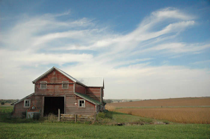 Barn, Field and Clouds in Autumn by Carol Abbott