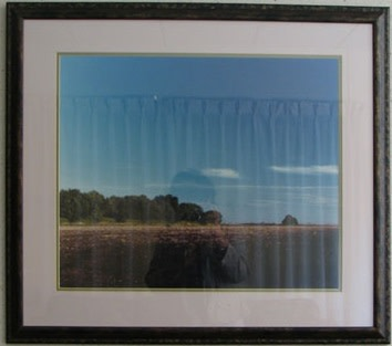 Bare Field Under Harvest Moon by Larry Kanfer