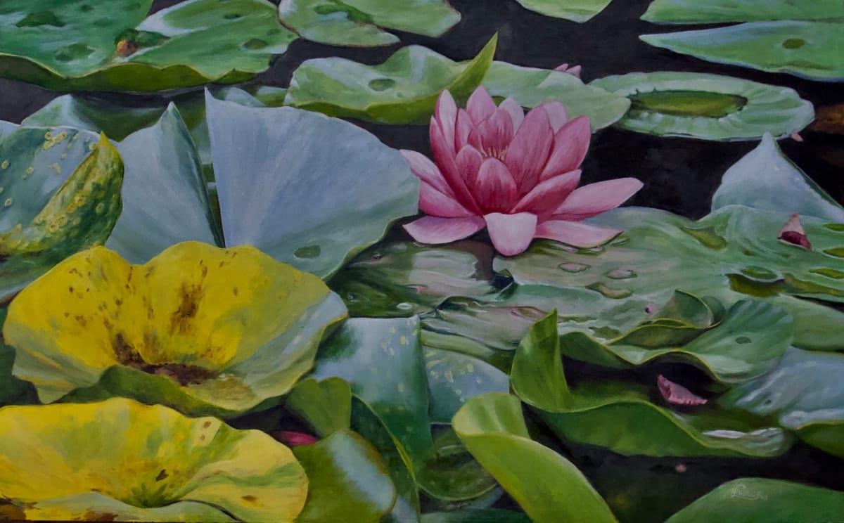 Beside Still Waters by Tammy Taylor