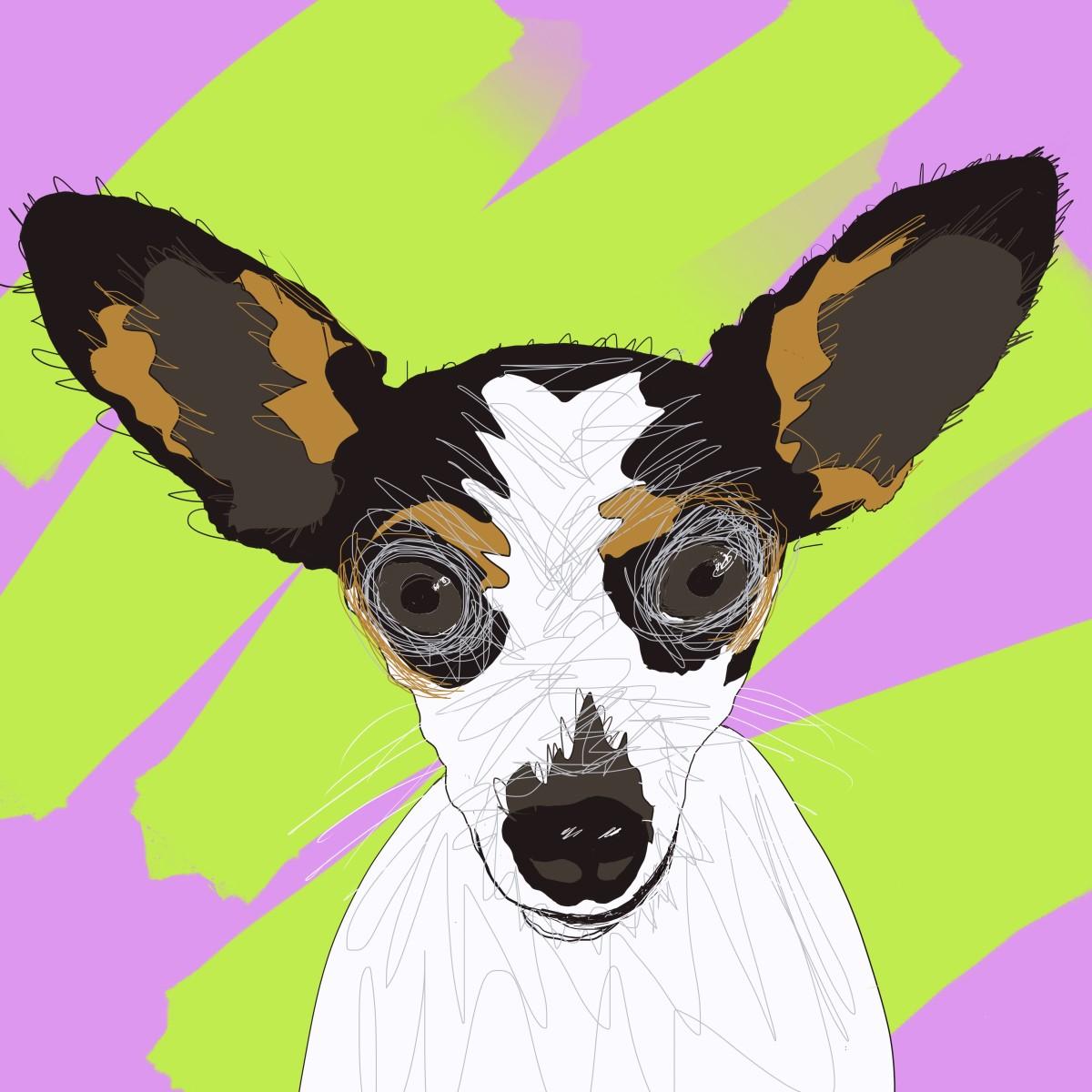 Pippi the Dog