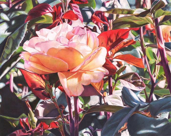 "7th Place – Overall - Robin Manelis - ""Abundant Beauty"" –  www.robinmanelis.com"