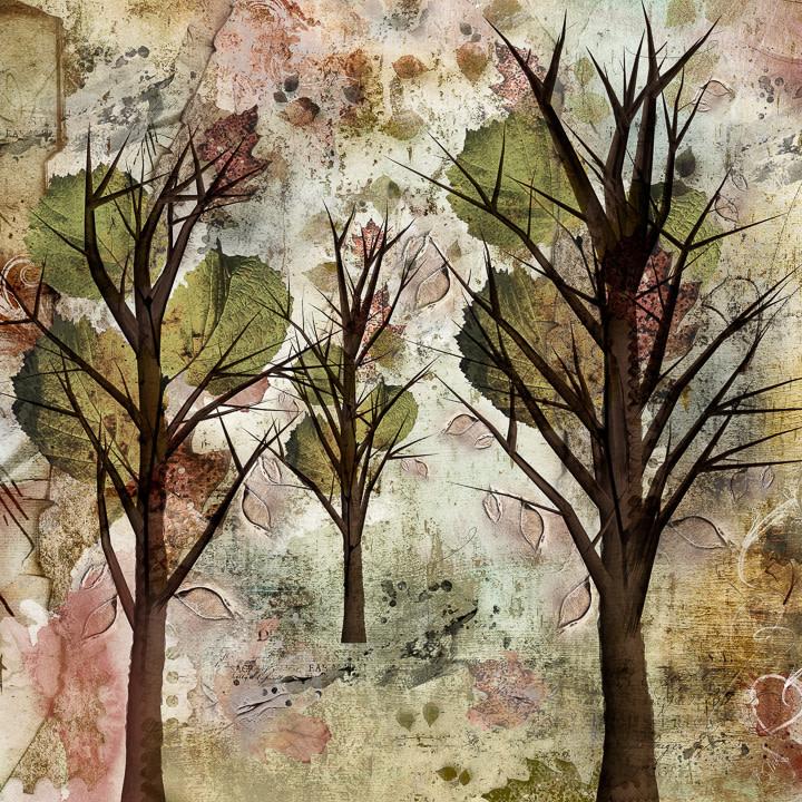 """5th Place - Barbara Mierau-Klein - """"Grungy Fall"""" by Barbara Mierau-Klein"""