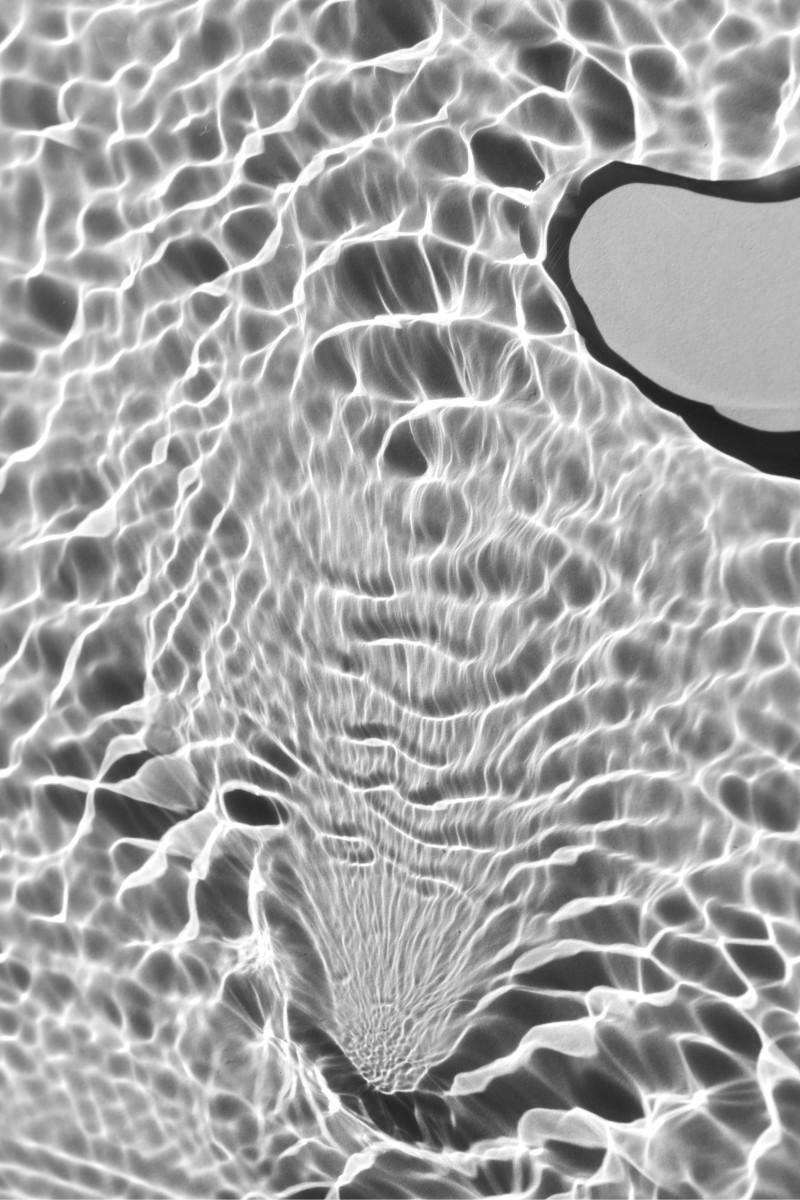 MicrocosmsDyptich1A