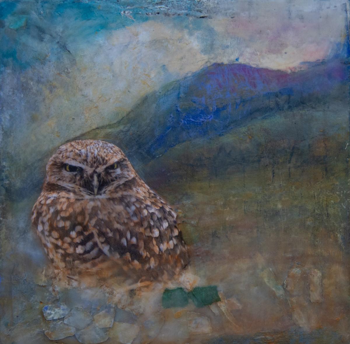 Burrowing Owl by Alise Sheehan Art