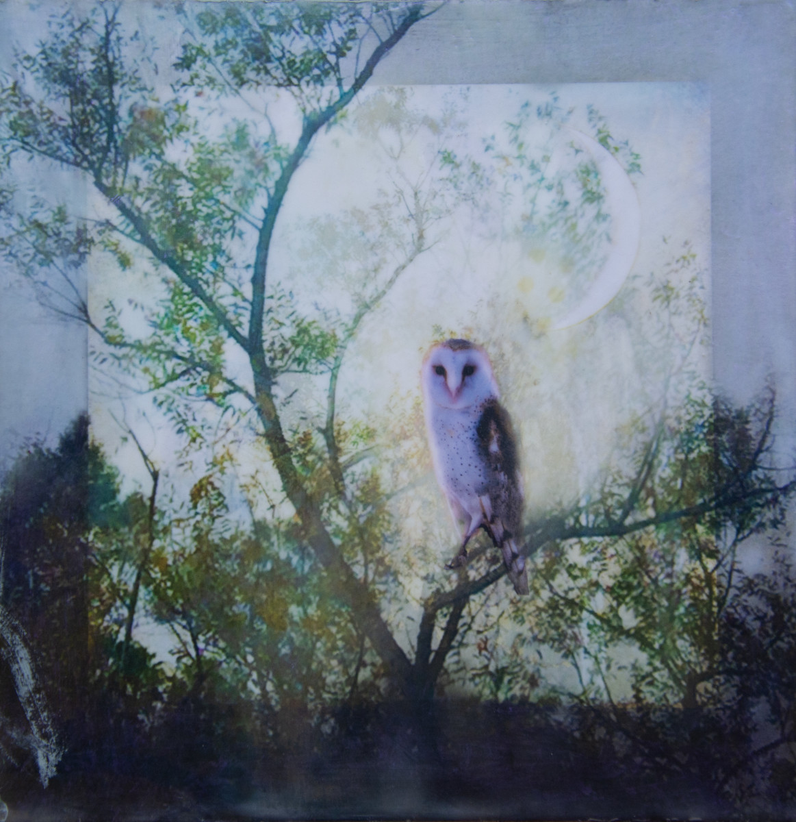 The Owl And The Moon by Alise Sheehan Art