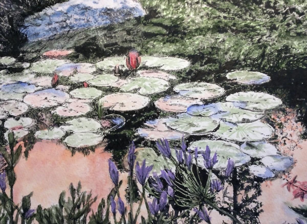 Lilypads by Wanda Fraser
