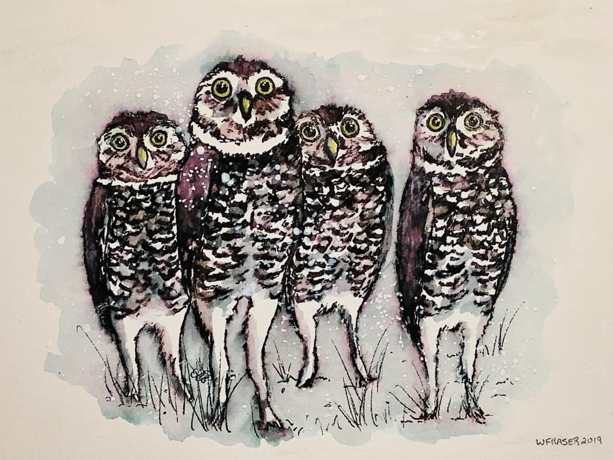 A Parliament of Burrowing Owls by Wanda Fraser