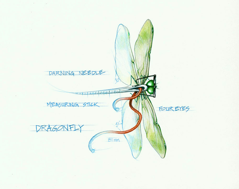 Dragonfly (Framed Original) by Rick  Nass
