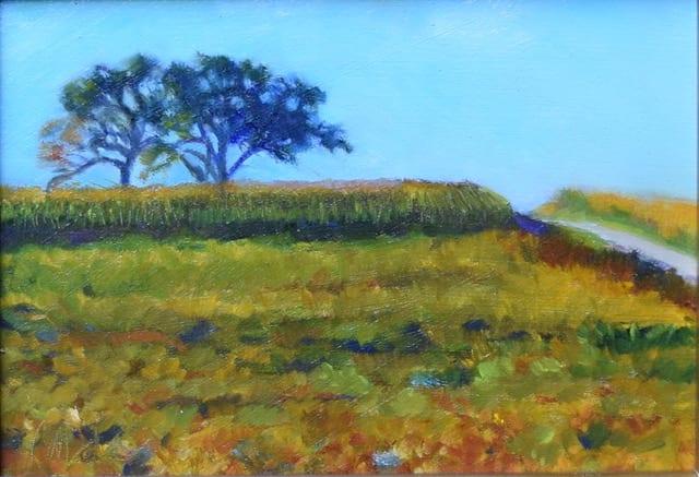 Colours of the Harvest (Framed original) by Jane Varda