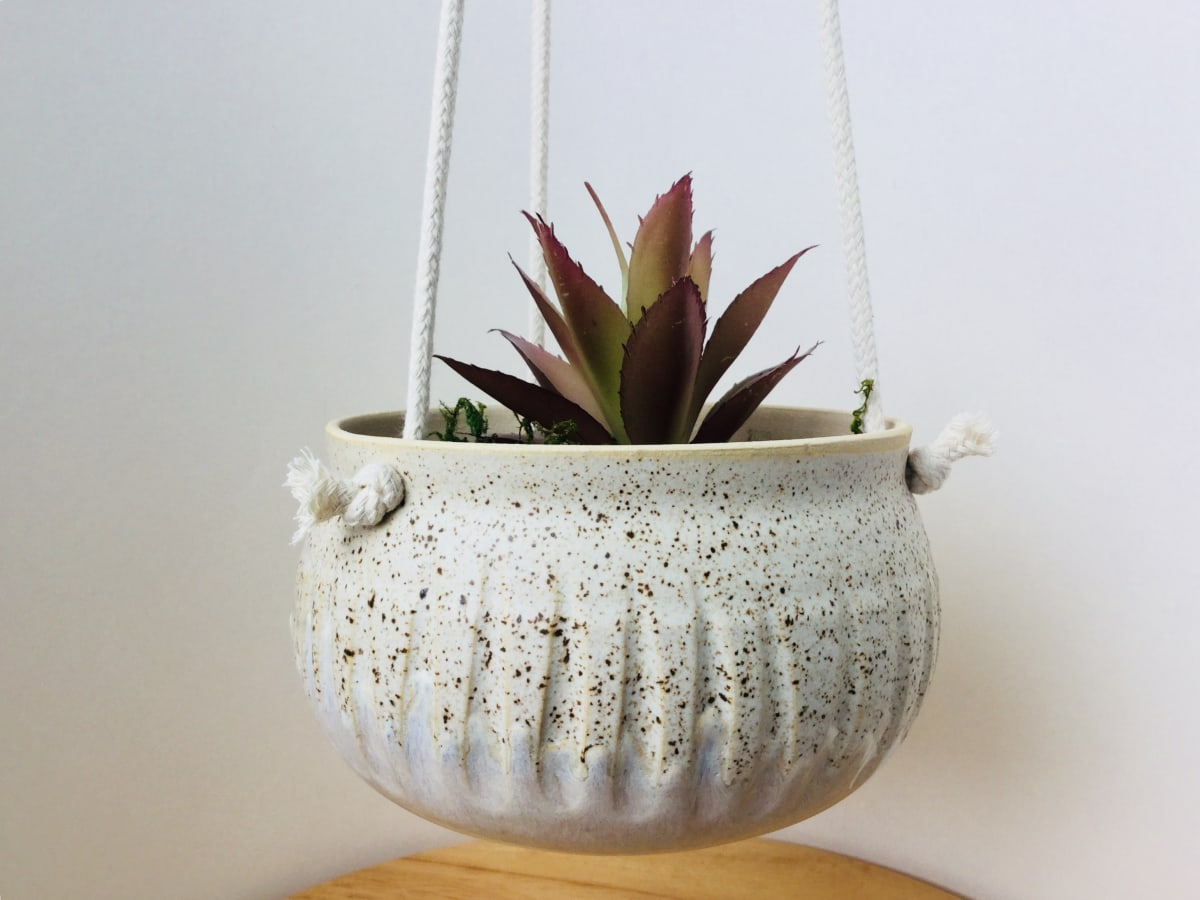 Hanging Planters by Amber Gavin