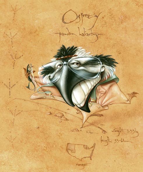 Osprey (Framed Original) by Rick  Nass