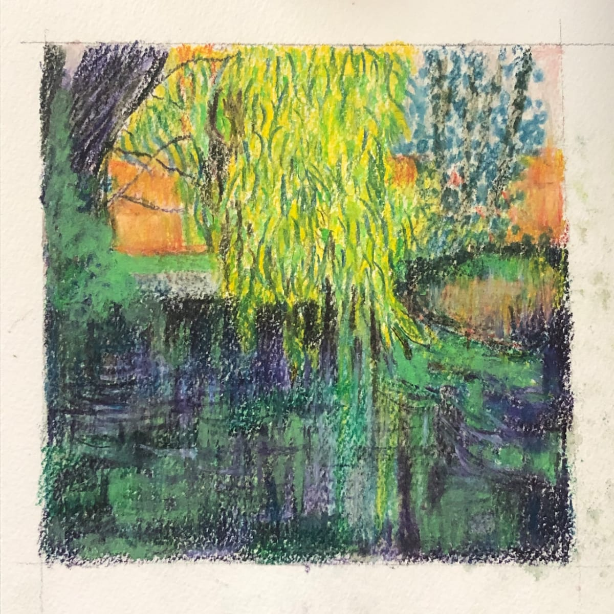 Weeping willow by CLARE SMITH